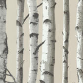 Irvin Birch Tree Linen Wallpaper 2532-20418