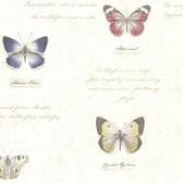 Admiral Butterflies and Script Linen Wallpaper 2532-20453
