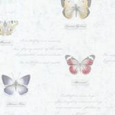 Admiral Butterflies and Script Frost Wallpaper 2532-20454