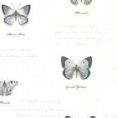Admiral Butterflies and Script Grey Wallpaper 2532-20455
