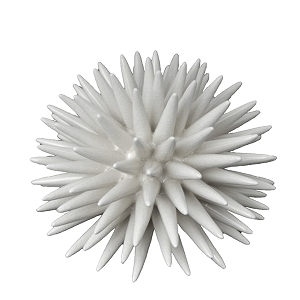 porcelain-sea-urchin-ceramic-thumbnail.jpg