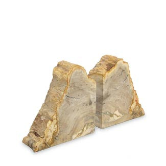 Petrified Wood Bookends Set