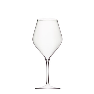 Absolus Red Wine Glass - Set of 6