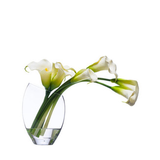 Small Cream Calla Lily
