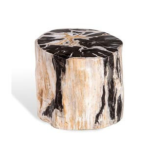 Lestari Petrified Wood Side Table