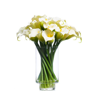 White Calla Lilies in Footed Cylinder