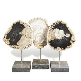 Natural Petrified Wood Trio