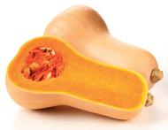 Pumpkin - Butternut - half