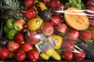 Fruit Tray - Large