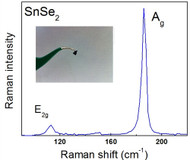 Raman spectrum of SnSe2 crystals