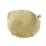 Clam Sea Shell Diamond Pin 18k Yellow Gold Diamond