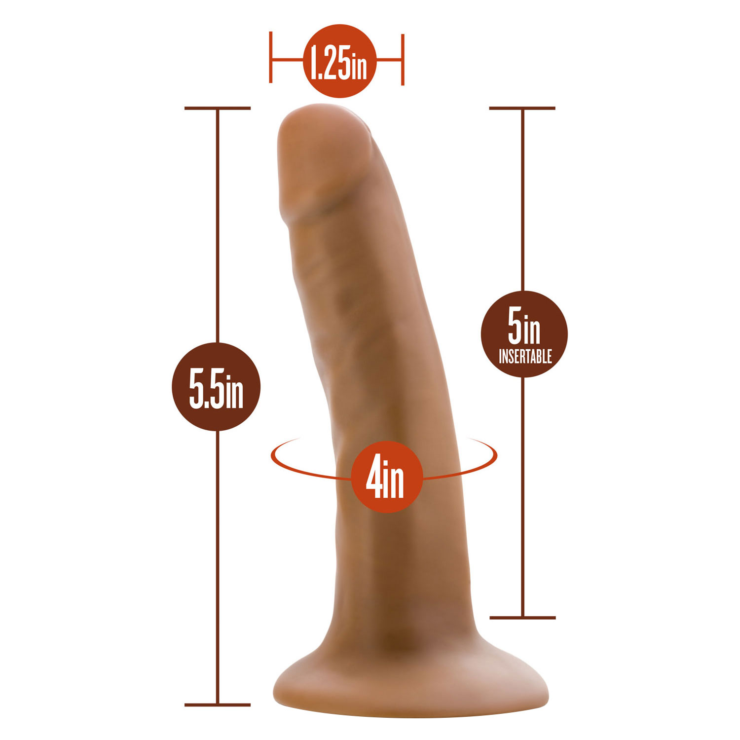Dr. Skin 5.5 Inch Cock - Measurements
