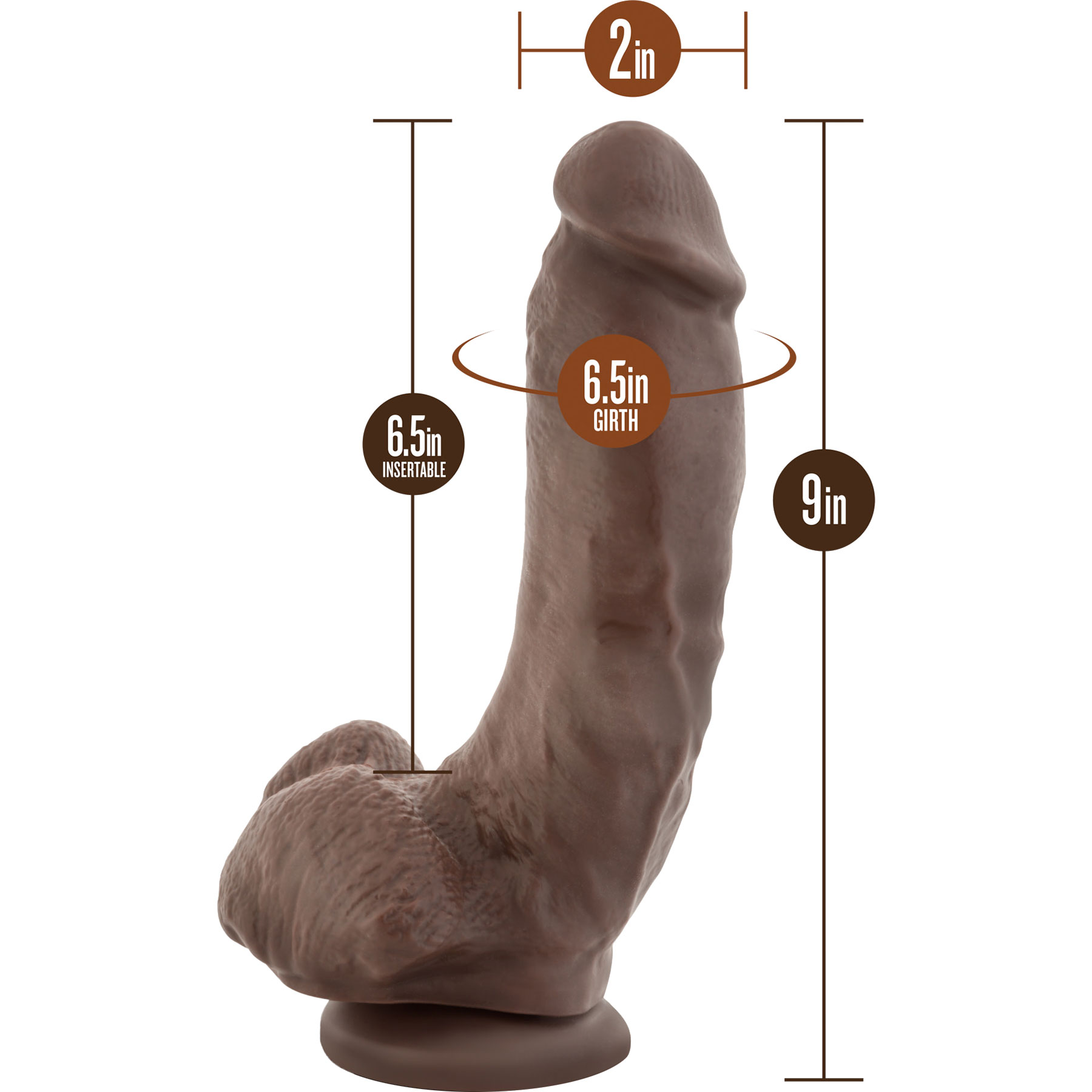 Dr. Skin Mr. Mayor Realistic Dildo With Balls & Suction Cup - Measurements