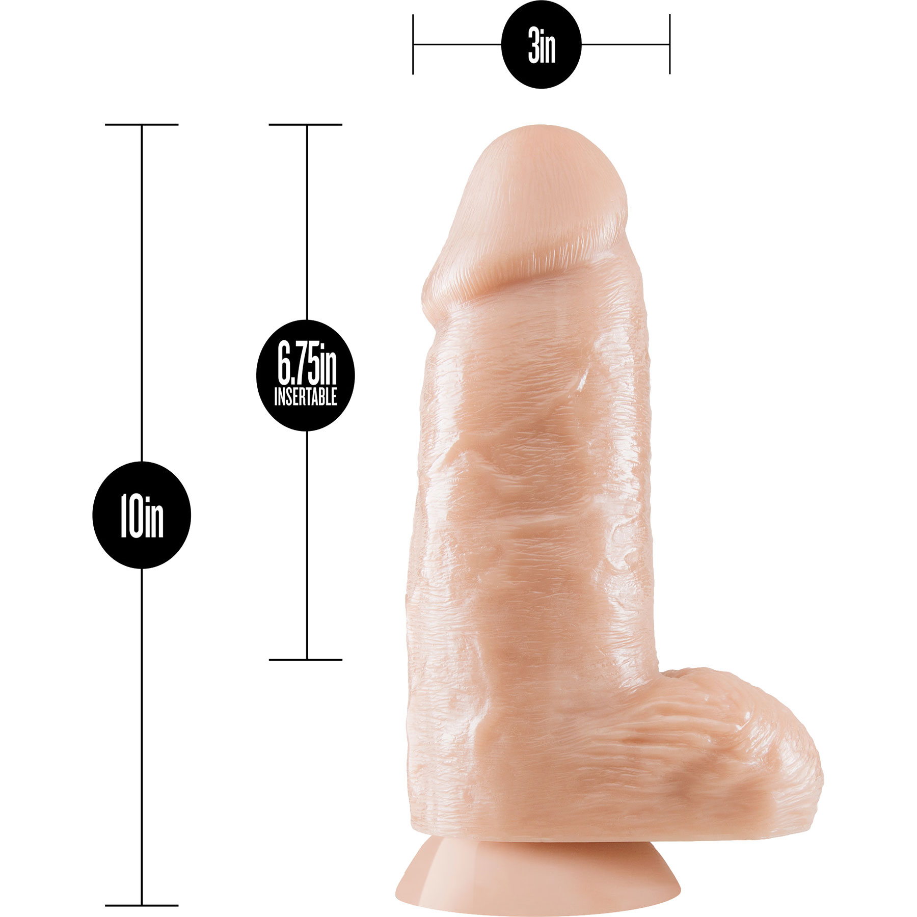 Dr. Skin Dr. Chubbs Dildo With Balls & Suction Cup - Measurements