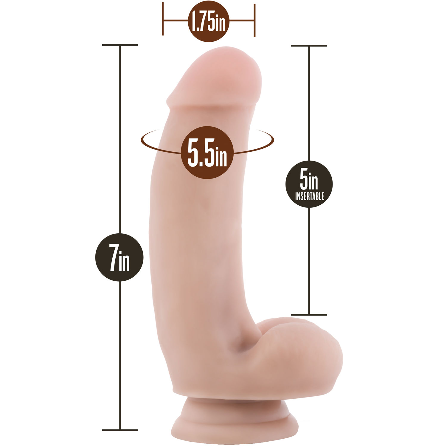 Silicone Willy's 7 Inch Silicone Suction Cup Dildo With Balls - Measurements