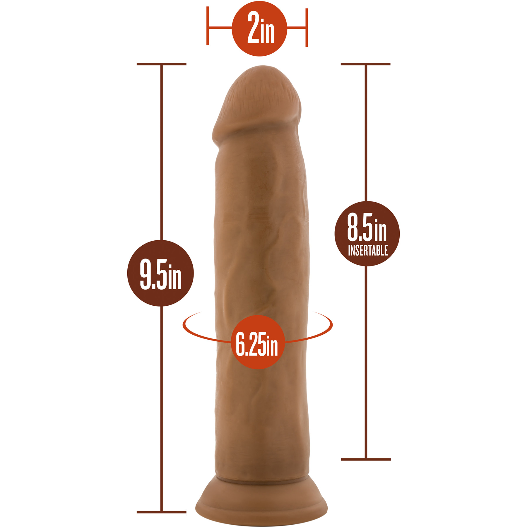 Dr. Skin 9.5 Inch Realistic Dildo With Suction Cup by Blush - Measurements