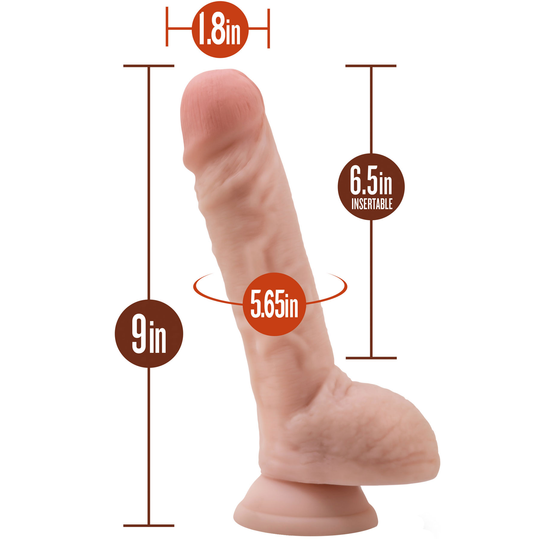 Silicone Willy's 9 Inch Silicone Suction Cup Dildo With Balls - Measurements