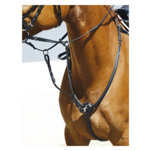 Leather Breastplate with Martingale