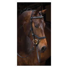 Rambo Micklem Competition Bridle Diamante