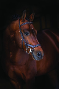 Rambo Micklem Deluxe Leather Bridle