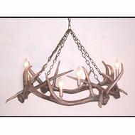 HP66593 Elk Antler Chandelier