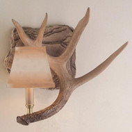 HP66596 Whitetail Antler Right Wall Sconce