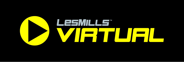 lmi-virtual-logo.jpg