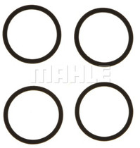 MAHLE 6.0L Engine Crankcase Breather Seal (03-07 POWERSTROKE)