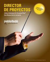 Director de Proyectos