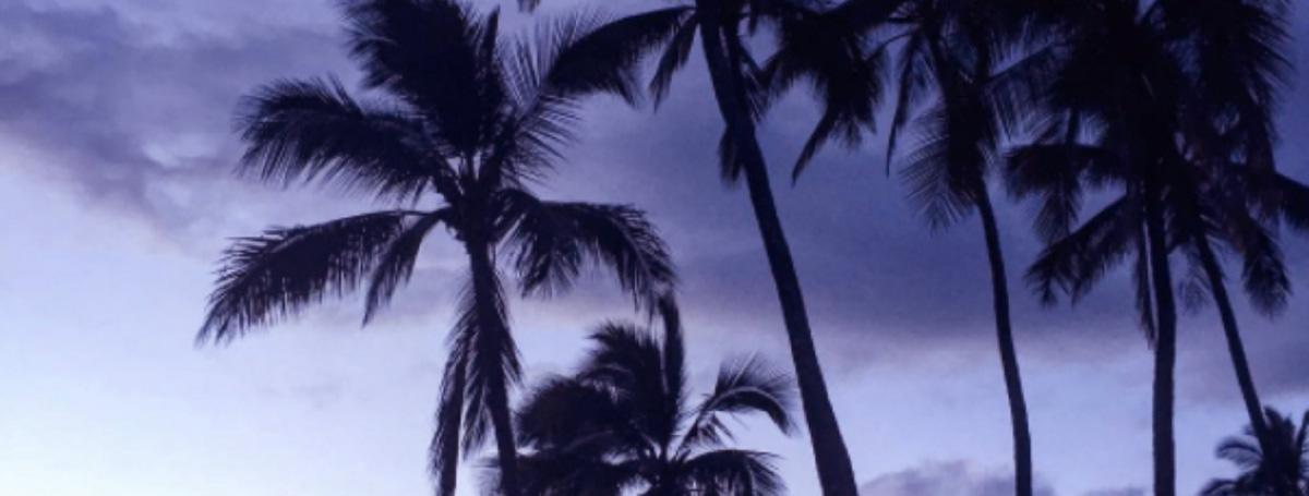 hawaii_july_2017_coverimage.jpg