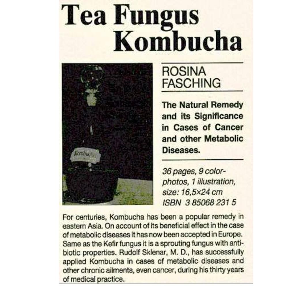 Kombucha Tea Fungus  by Rosina Fasching