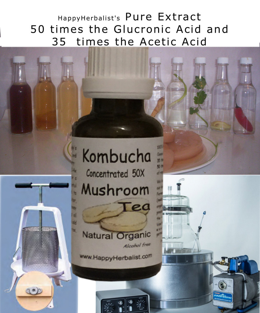 Our Kombucha Concentrate is based upon the  German Kombucha Patent @ 1927 (its in our Library)