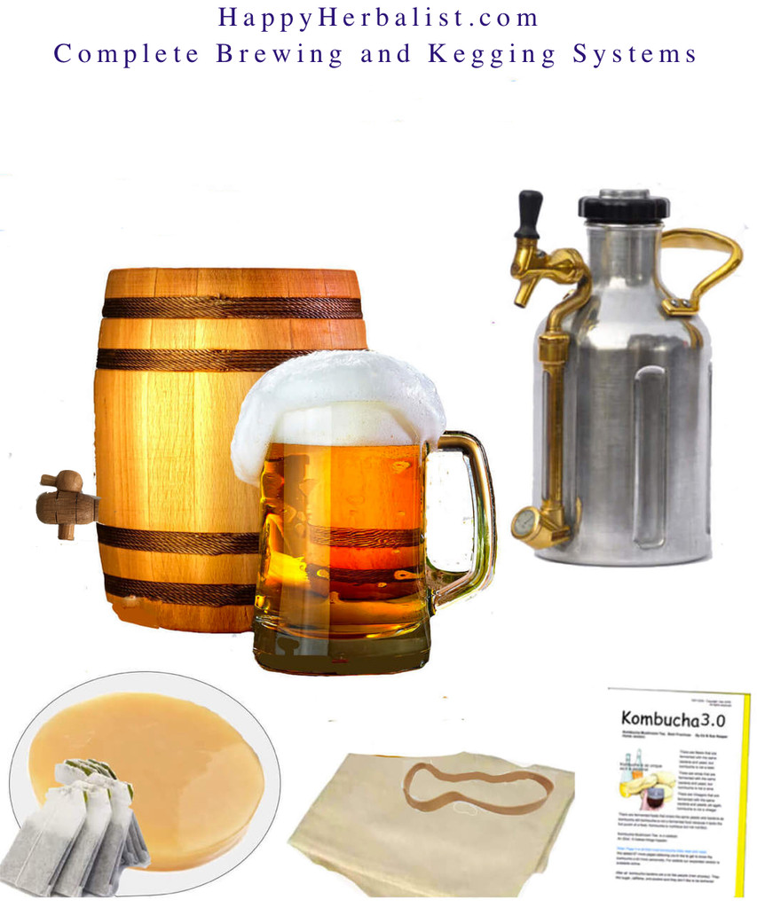 Complete Kombucha Brewing and Kegging System