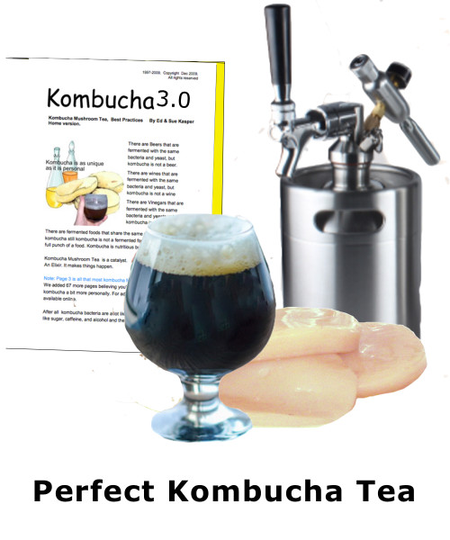 Perfect Kombucha Tea