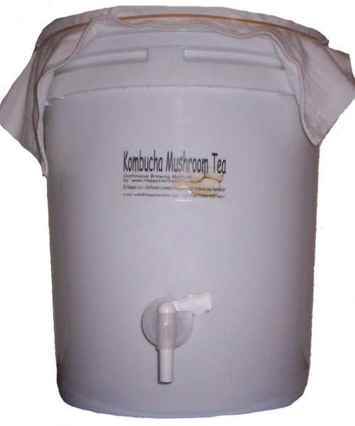 5 Gallon Food Grade Dispenser