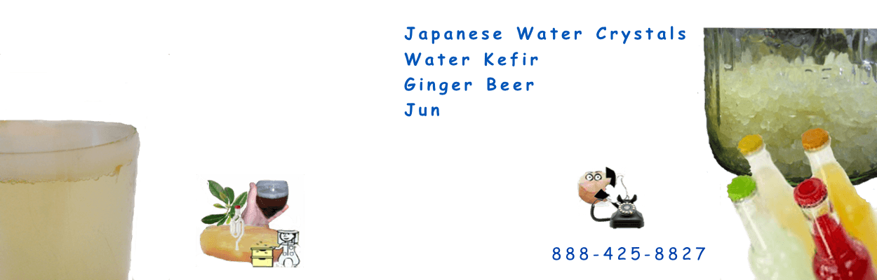 Fresh LIve Raw Probiotic,Water Kefir,Water Crystals,Japanese Water Crystals,Ginger Beer,Ginger Beer Plant,Ginger Bug,Jun, we got em all.