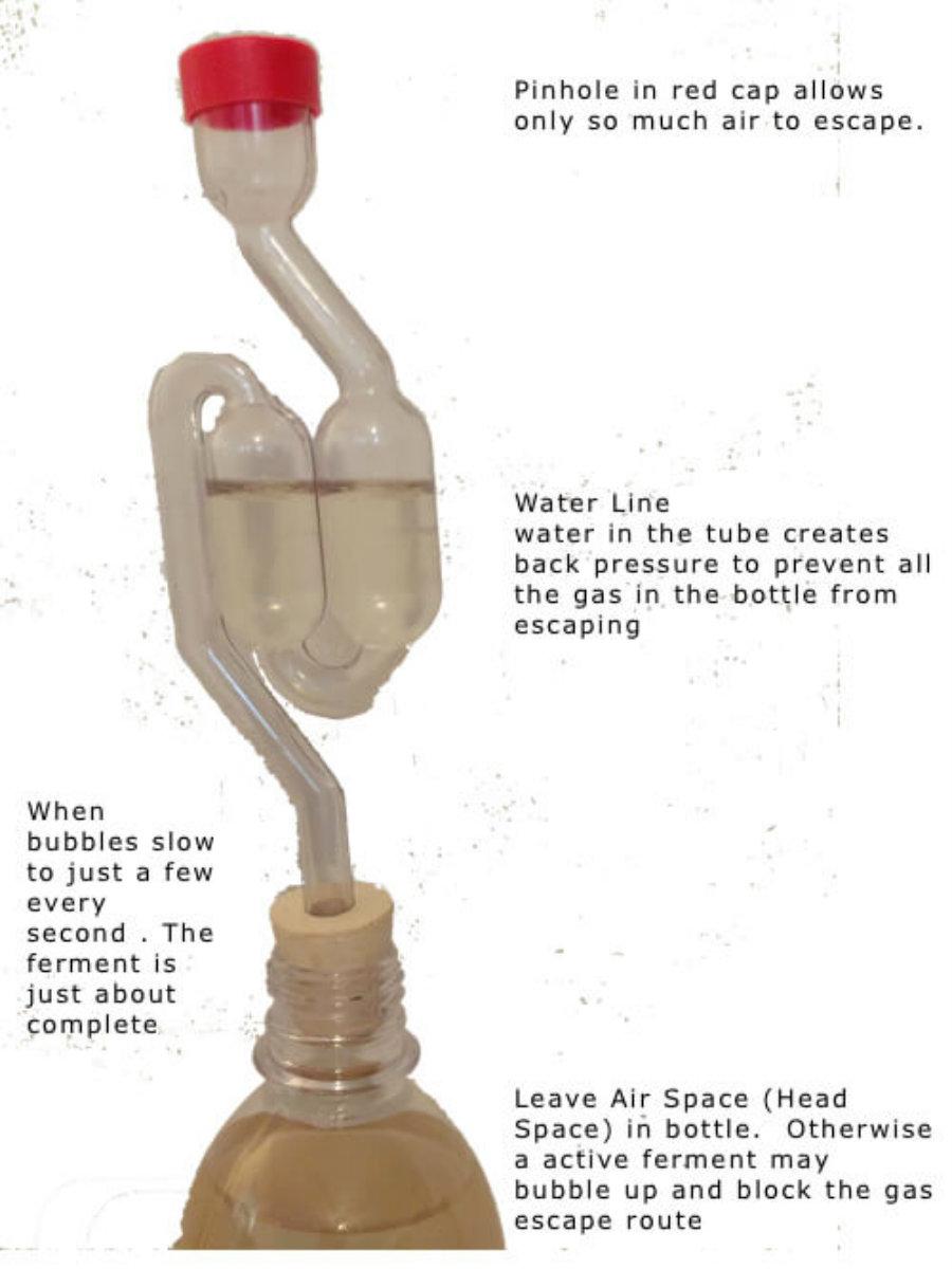 airlock-bottle-copy.jpg