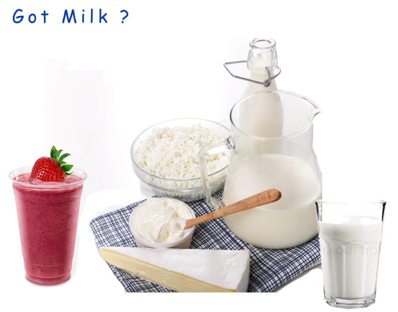 milk-ferments-raw-live-natural-functional-food-2.jpg