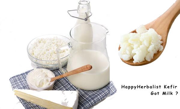 milk-kefir-gor-milk-real-probiotic-real-food.jpg