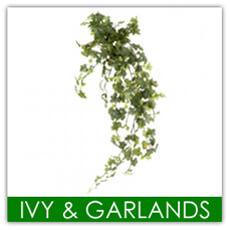 Ivy & Garlands