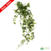 Ivy Bush Vine 85cm (pack of 6)