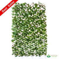 Ivy Trellis Expandable to 3m