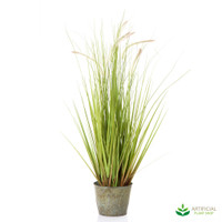 Wheat Grass in metal Pot 80cm (set of 2)