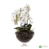 White Orchid in round Glass Vase 1m