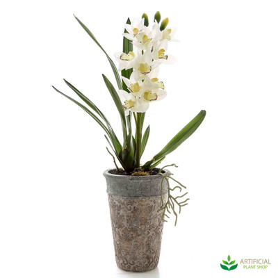 Jodie Orchid Potted 75cm