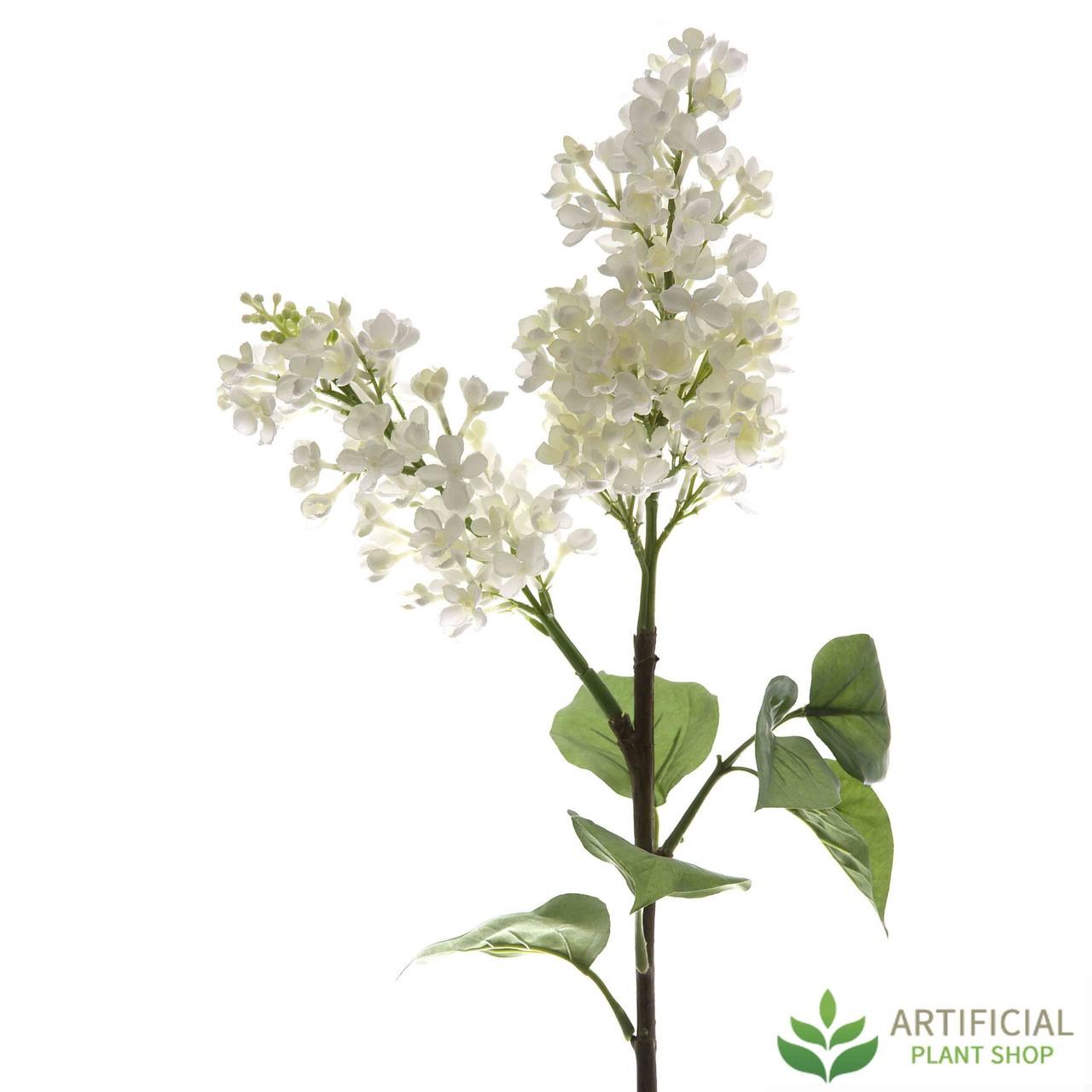 White lilac spray 80cm white lilac spray 80cm pack of 6 mightylinksfo
