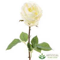 White York Rose Short Stem 52cm (pack of 6)