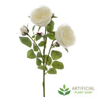 White English Rose 55cm (pack of 6)