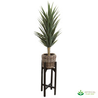 Yucca 1.3m in Rattan Pot Stand