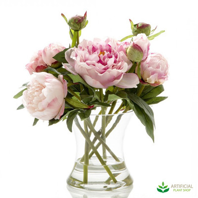 Dark Pink Peony in Glass Vase with water 30cm